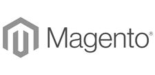 Entwicklung von Magento Shopsystemen