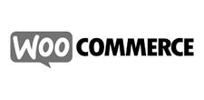 Entwicklung von WooCommerce Shopsystemen
