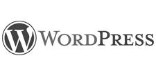 Entwicklung von WordPress Websites